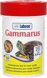 labcon gammarus
